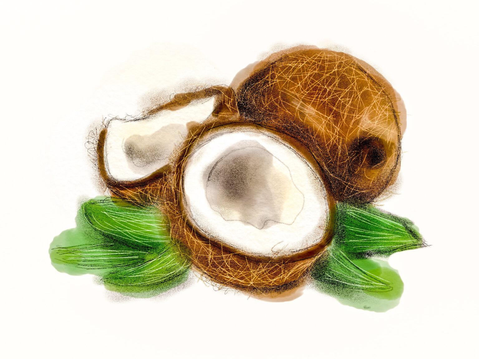 有機ココナッツオイルについて。